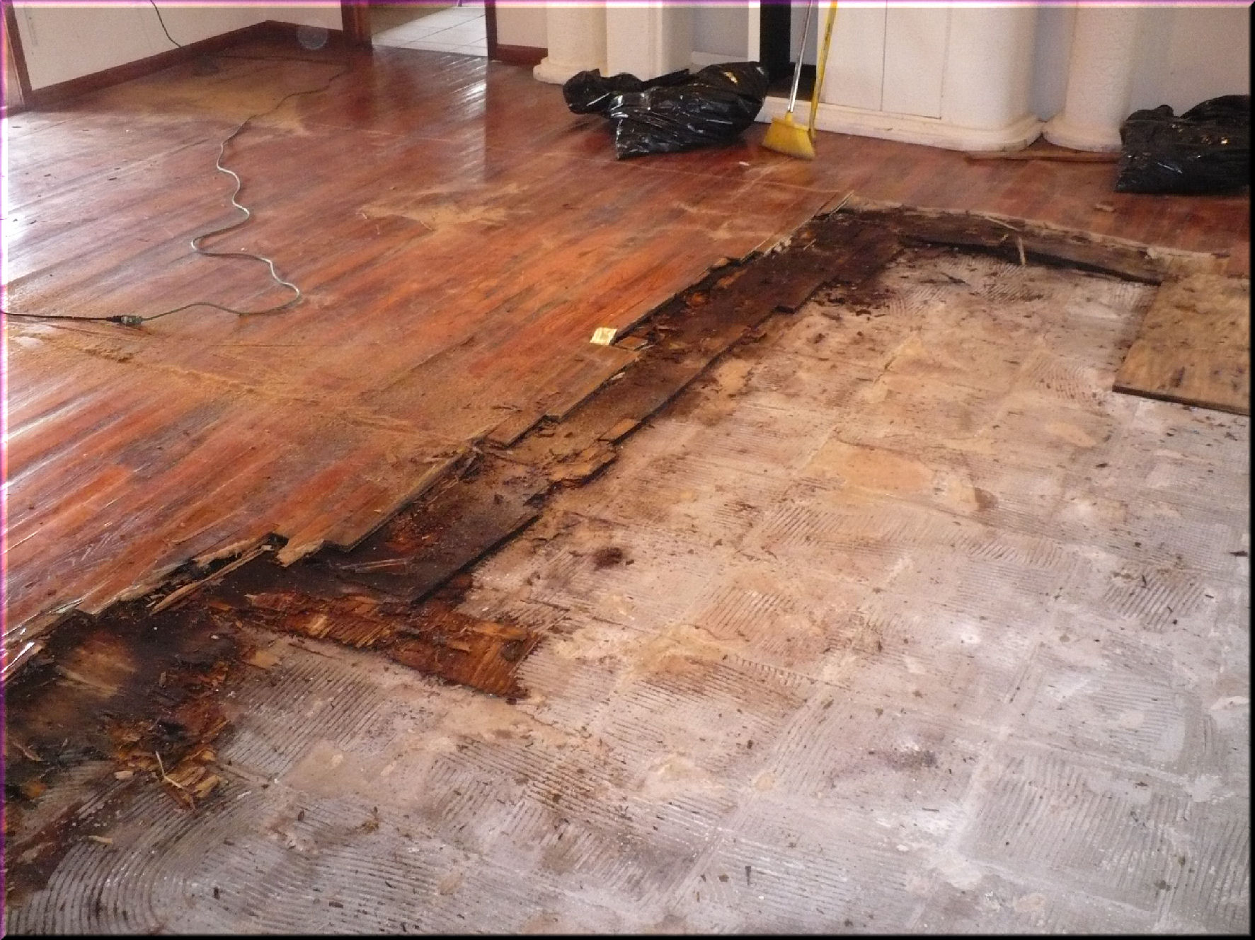 New Standard Released to Prevent Mold For New Construction Including
