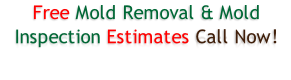 Free Mold Removal & Mold Inspection Estimates Call Now!