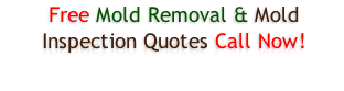 Free Mold Removal & Mold Inspection Quotes Call Now!